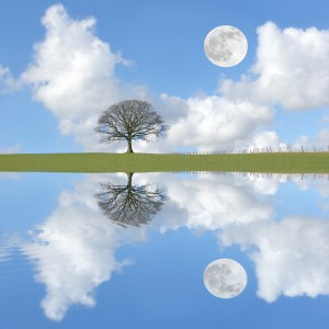 Tranquility : Clear Reflection dreamstime_l_5727772