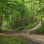Living a Yogic Life – Part 2